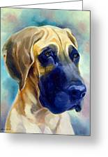 Great Dane Pup Greeting Card