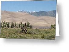 Great Dunes Trifective Range  Greeting Card