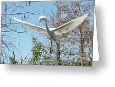 Great Egret Over The Treetops Greeting Card