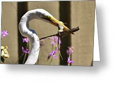 Great Egret With Lizard Who Is Holding Onto Wood Greeting Card