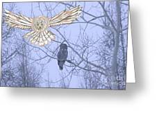 Great Gray Owl Together Greeting Card