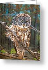 Great Grey Owl 2 Greeting Card