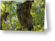 Great Horned Majesty Greeting Card