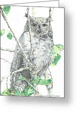 Great Horned Owl Perched In A Tree Greeting Card