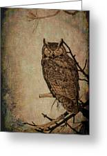 Great Horned Owl With Textures Greeting Card