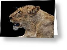 Great Lioness Greeting Card