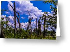 Great Meadow Greeting Card