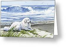 Great Pyrenees At The Beach Greeting Card