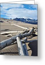 Great Sand Dunes National Park Driftwood Portrait Greeting Card