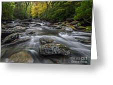 Great Smoky Mountains. Greeting Card by Itai Minovitz