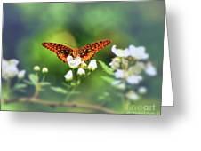 Great Spangled Fritillary Looking At Me Greeting Card