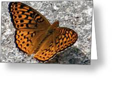 Great Spangled Fritterlary Greeting Card