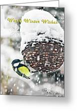 Great Tit In The Snow Card Greeting Card