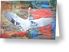 Great White Egret Landing Greeting Card