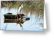 Great White On Row Boat Greeting Card