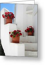 Greek Steps  Greeting Card