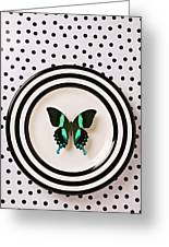 Green And Black Butterfly On Plate Greeting Card