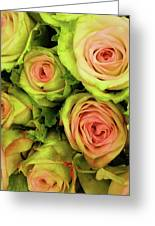 Green And Pink Rose Bouquet Greeting Card