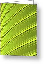 Green And Yellow Building Abstract Greeting Card
