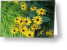 Green And Yellow Burst Greeting Card