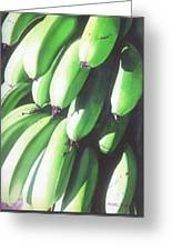 Green Bananas I Greeting Card