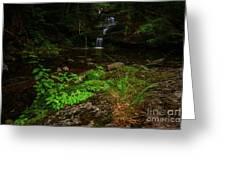 Green Cascade Greeting Card