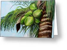 Green Coconuts- 01 Greeting Card