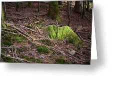 Green Covered Rock Greeting Card
