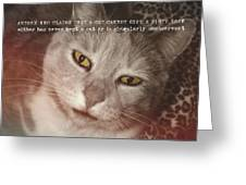 Green Eyed Glare Quote Greeting Card