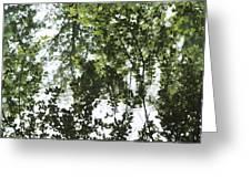 Green Fantasy Greeting Card
