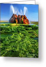 Green Fly Geyser Greeting Card by Inge Johnsson