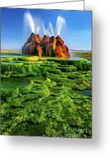 Green Fly Geyser Greeting Card