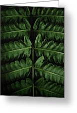 Green Foilage Of Indonesia Greeting Card
