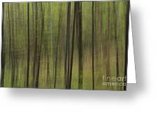 Green Forest Greeting Card