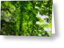Green Forest Trees 1 Greeting Card