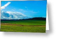 Green Grass And Blue Sky With White Clouds Greeting Card