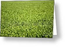 Green Grass Greeting Card