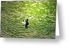 Green Head Greeting Card