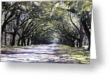 Green Lane Greeting Card