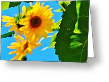 Green Leaf Greeting Card