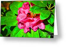 Green Leafs Of Pink Greeting Card