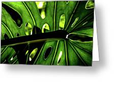 Green Leave With Holes Greeting Card