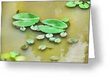 Green Lotus Leaf In The Lake Greeting Card