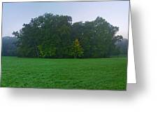 Green Meadow In Autumn Greeting Card