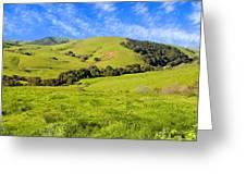 Green Meadow Santa Ynez Valley Ca Greeting Card