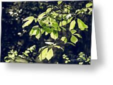 Green Mood 2 Greeting Card