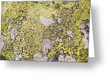 Green Moss On Rock Pattern Greeting Card