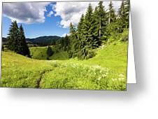 Green Mountain Greeting Card