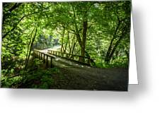 Green Nature Bridge Greeting Card