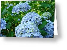 Green Nature Landscape Art Prints Blue Hydrangeas Flowers Greeting Card
